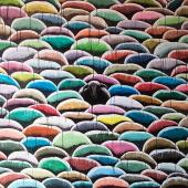 serie El Rebaño. Decisión, 2013. Acrílico sobre lienzo / 155 x 230 cm